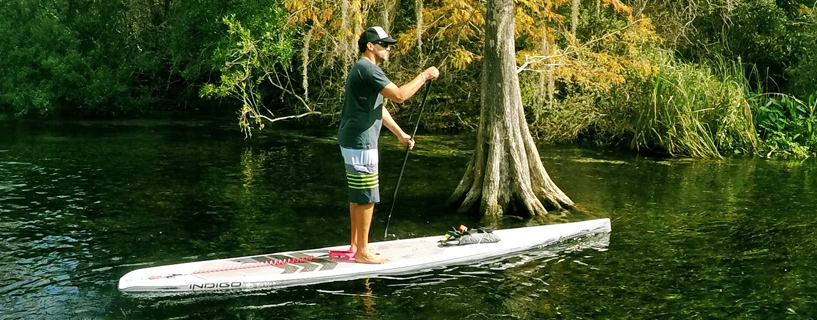 One of the most beautiful paddles you will do on the Gulf Coast of Florida in a Indigo Paddleboards Custom SUP